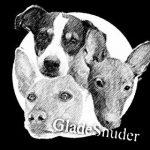 GladeSnuder_logo